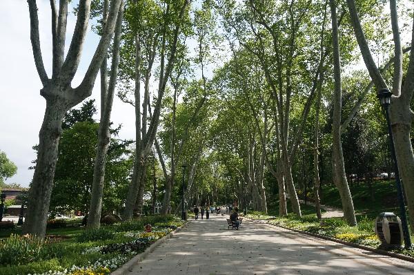 귤하네 공원