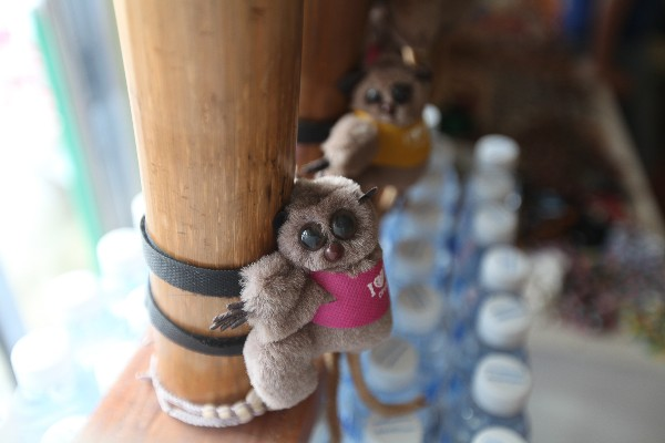 안경 원숭이 보호 구역