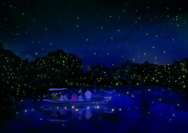 코타 키나발루  반딧불 투어와 특별체험