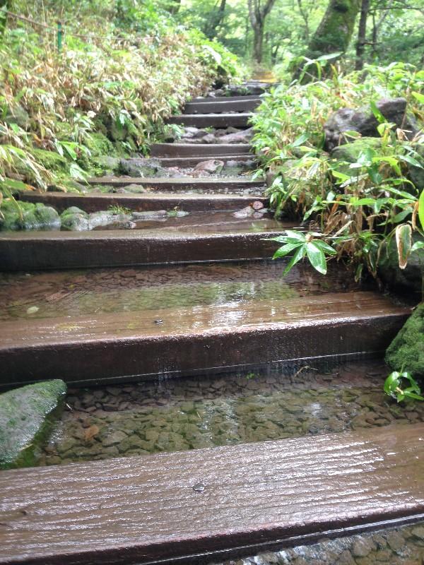 비 오는 날의 제주, 추천 장소