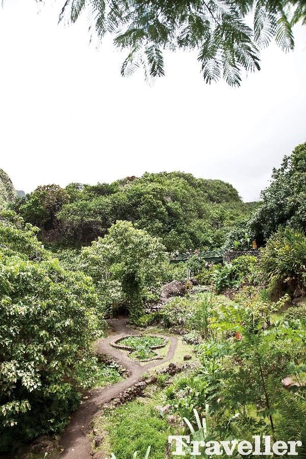 하와이 마우이를 즐기는 13가지 여행법
