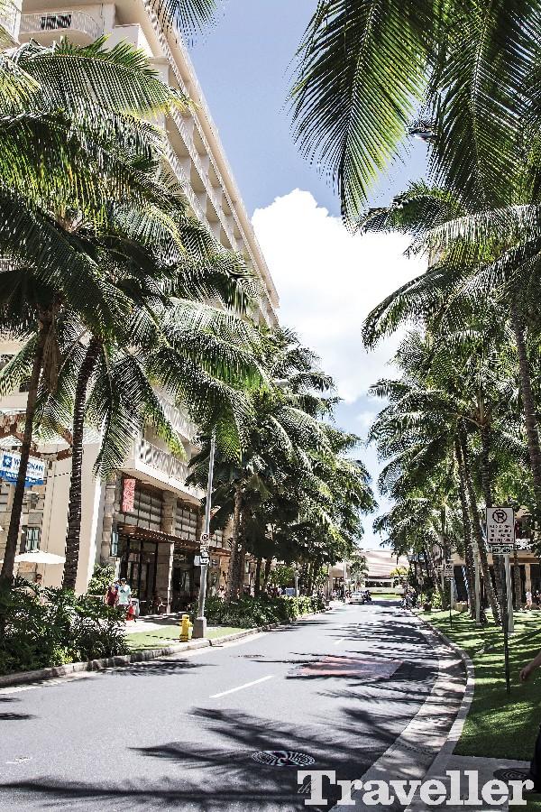 쇼핑 파라다이스, 하와이 오아후
