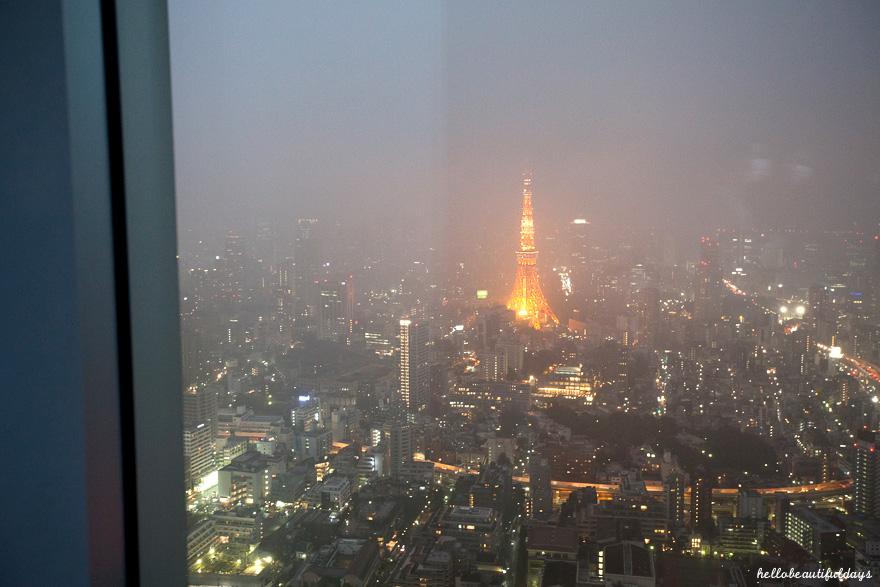 tokyo11_14