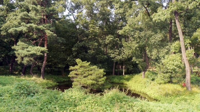 13 융건릉 연못 곤신지