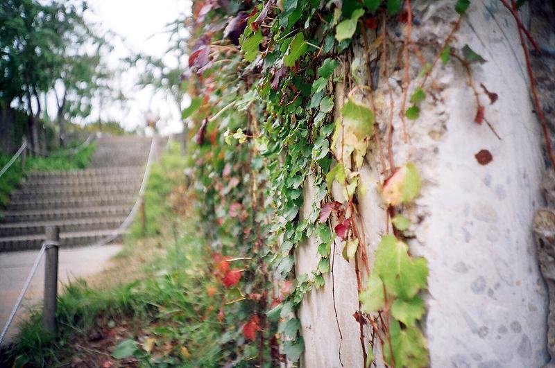 fall015