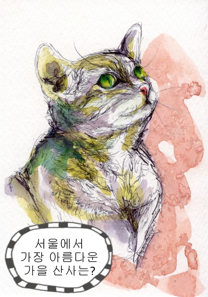 130831 Cat 3