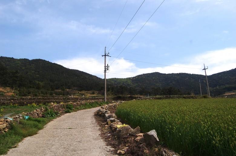청산도슬로우걷기축제_상서마을 (26)