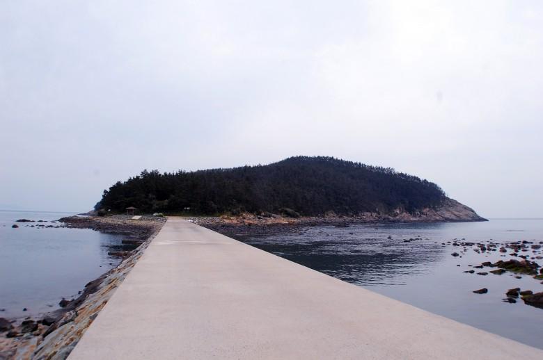 청산도슬로우걷기축제_목섬 (42)