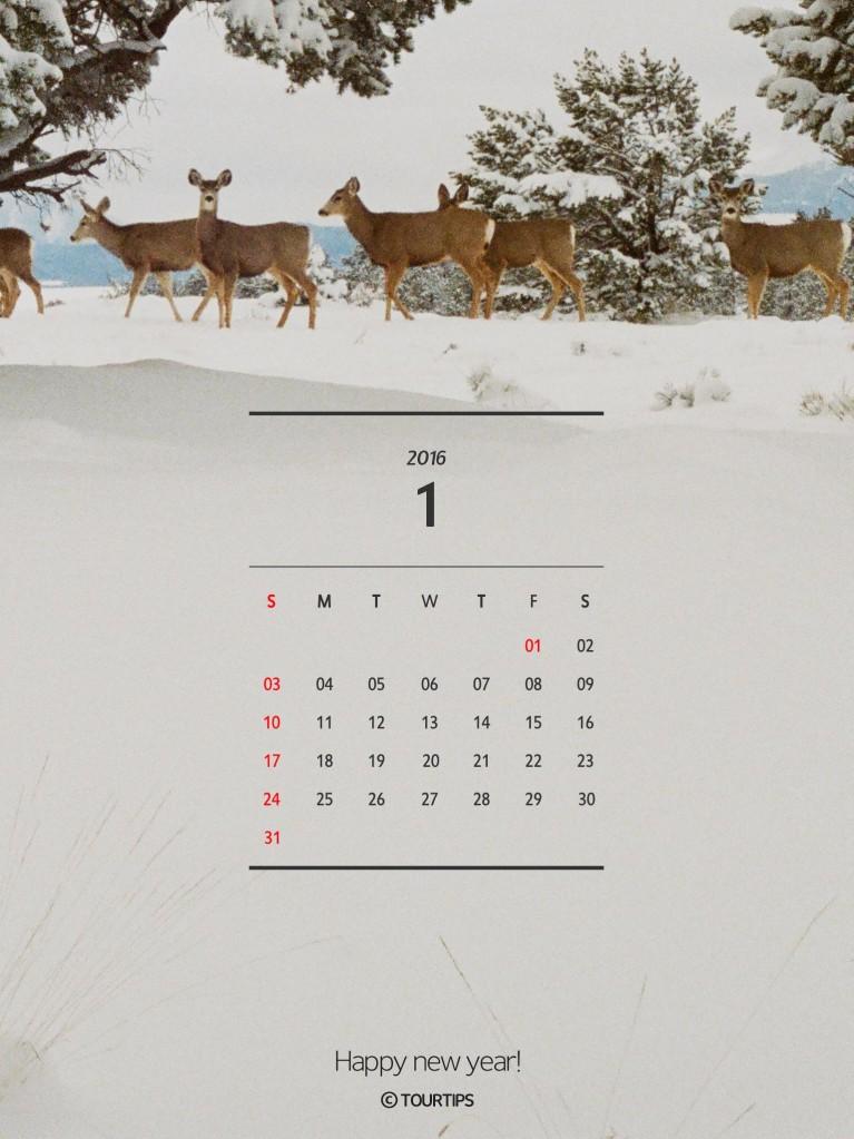 201601_mobile