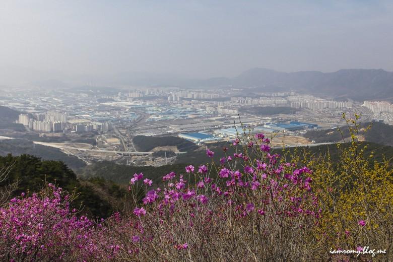 진해여행_018