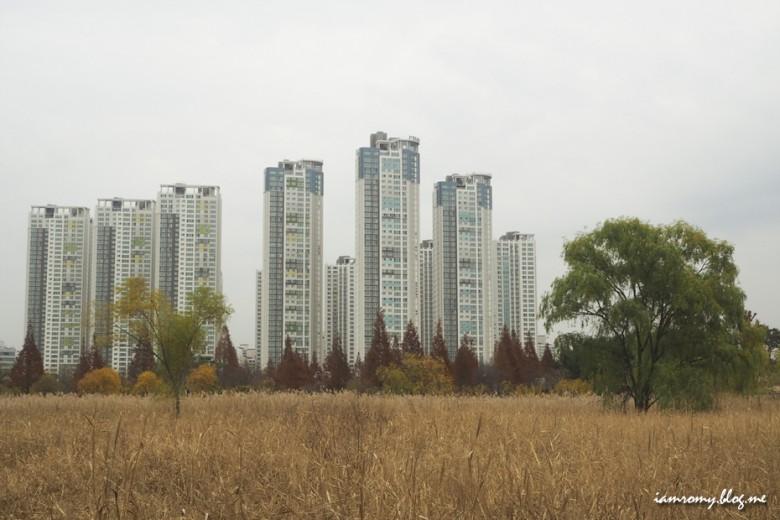 안산호수공원_009