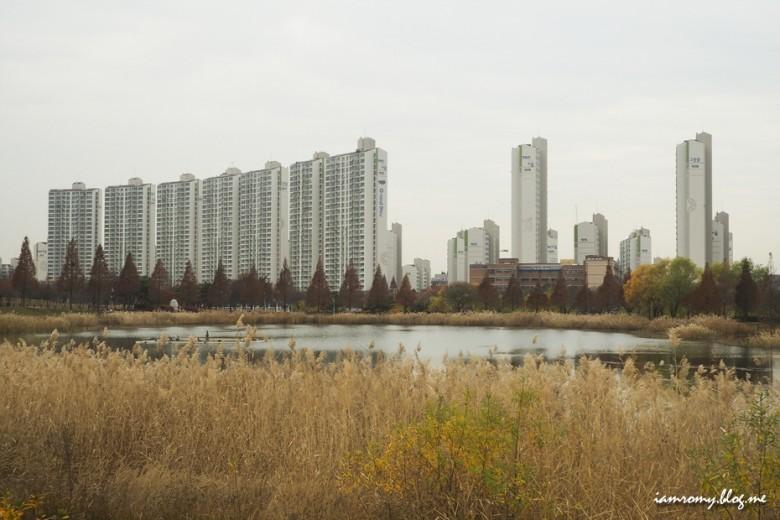 안산호수공원_013