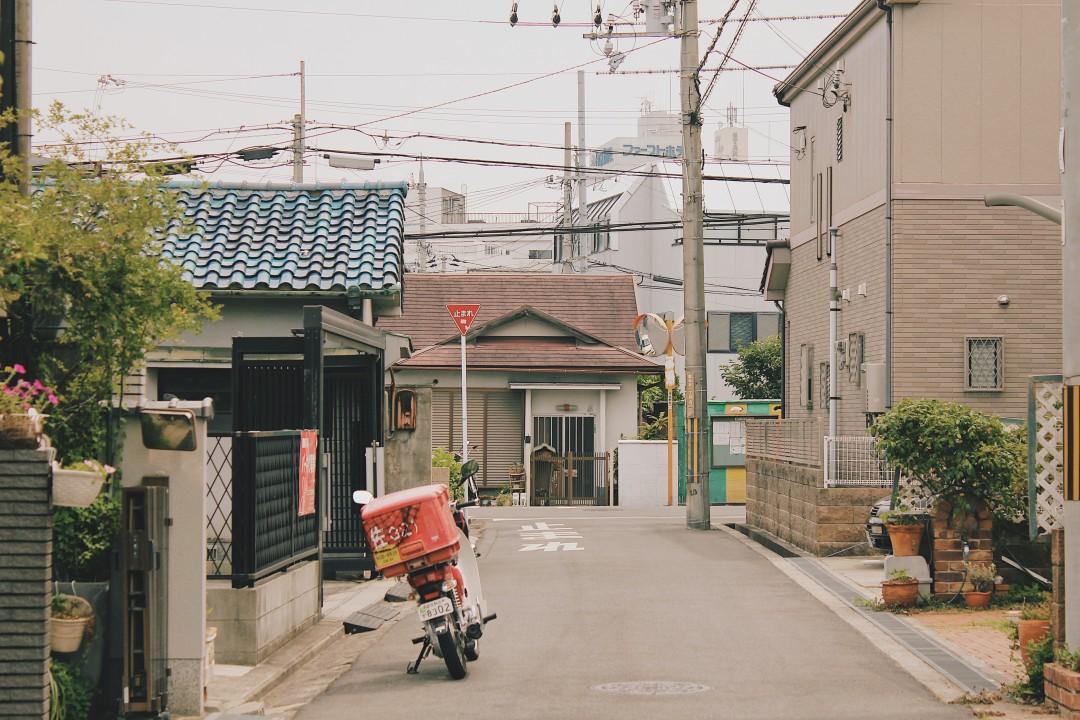 이즈미사노_(6).JPG