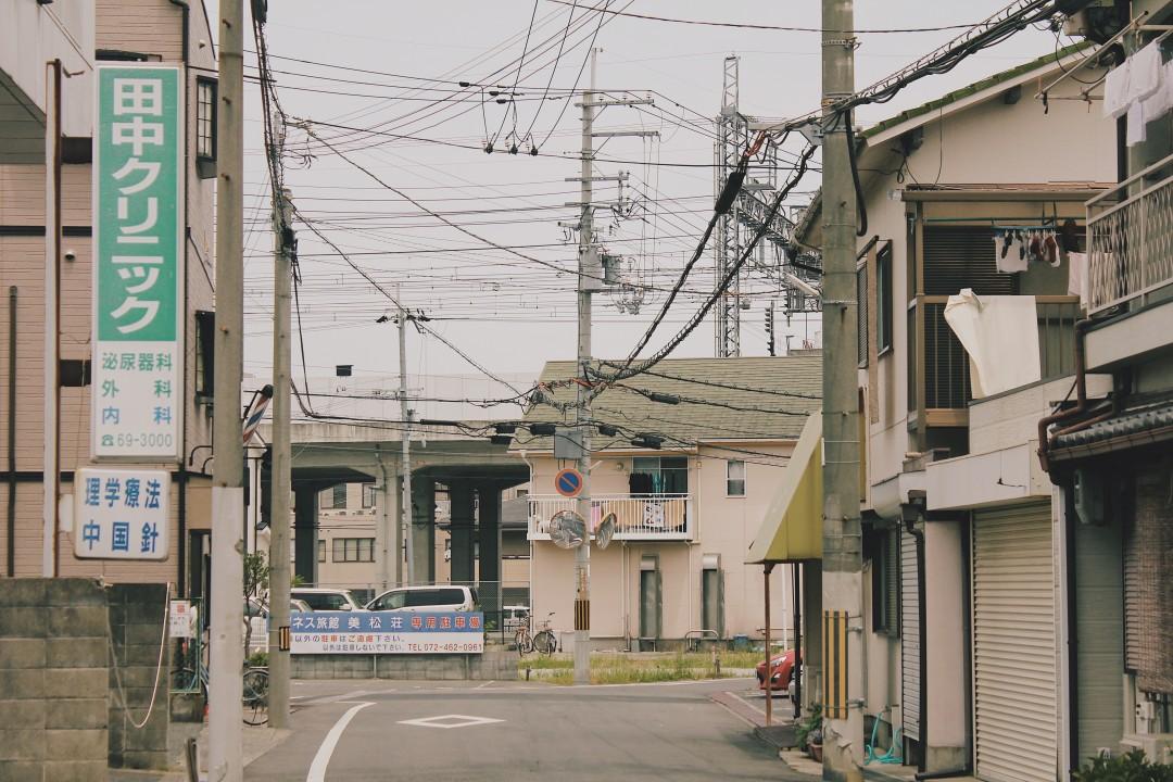 이즈미사노_(2).JPG