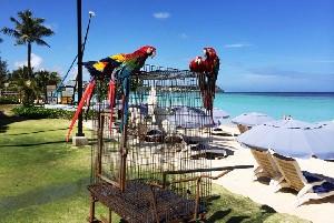 괌 하얏트 리젠시, 행복한 가족을 위한 호텔