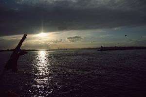 이스탄불 흑해에서 돌고래와의 조우!