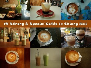 19 Strong & Special Cafes in Chiang Mai