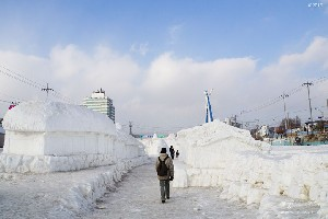겨울 왕국 평창의 대관령 눈꽃축제