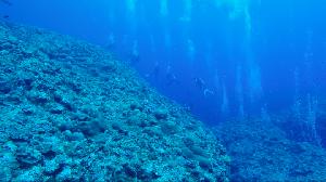 오키나와 케라마 제도, 선상 다이빙