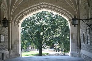 뉴욕 근교의 명문대학 방문, 프린스턴 대학교 vs 예일대학교