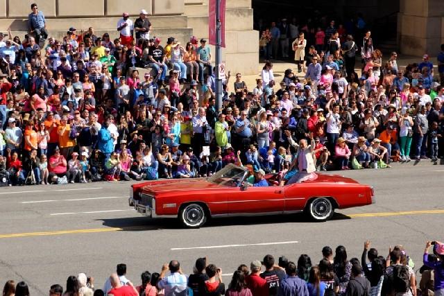 봄을 수놓는 꽃의 향연, 워싱턴DC 벚꽃 축제