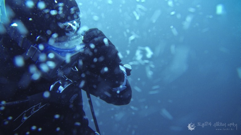 다이빙 이야기, 울진 바닷속 미역숲을 걷다