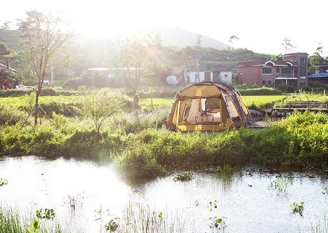 자연 그대로의 캠핑! 지금 민통선으로 캠핑 떠나볼까?
