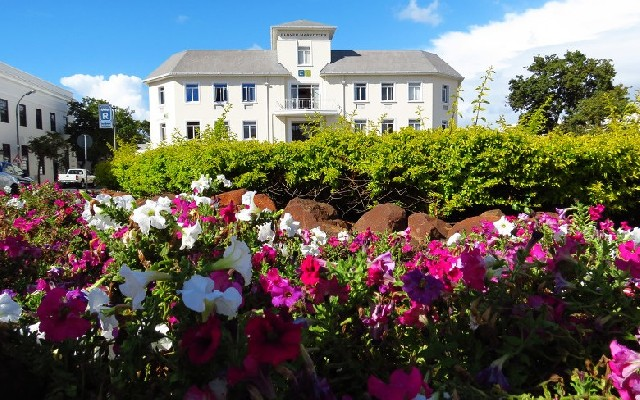 남아공 와인루트, 향긋한 와인 여행을 떠나다