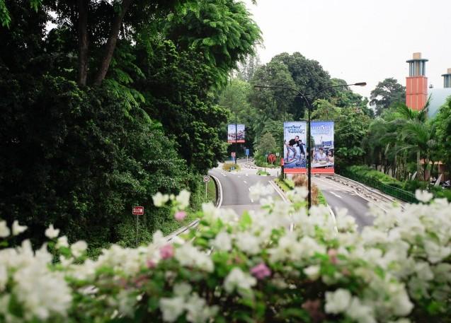 세계에서 가장 거대한 공원, 싱가포르