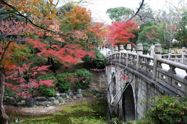 단풍에 물든 아름다운 교토의 가을 ①, 기요미즈데라(청수사)