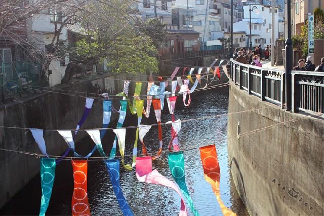 신주쿠의 또 다른 모습! 천연염색 축제