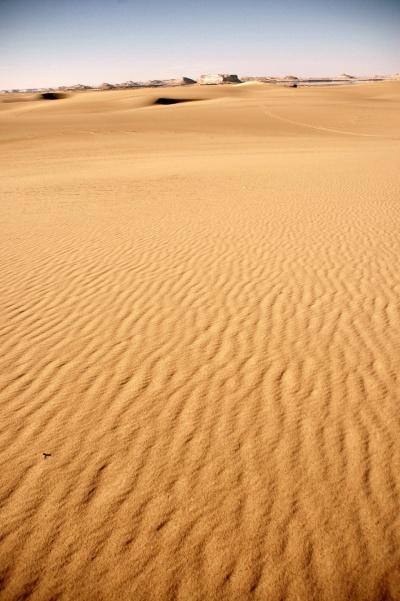 이집트, 사막의 중심에서 판타스틱 1박2일! #2/2