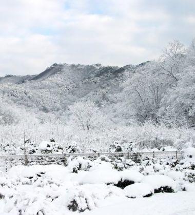 국내 겨울철 온천명소 BEST 5!