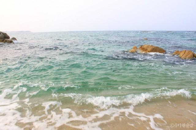 커피향 그윽한 동해바다, 강릉으로 떠나다.