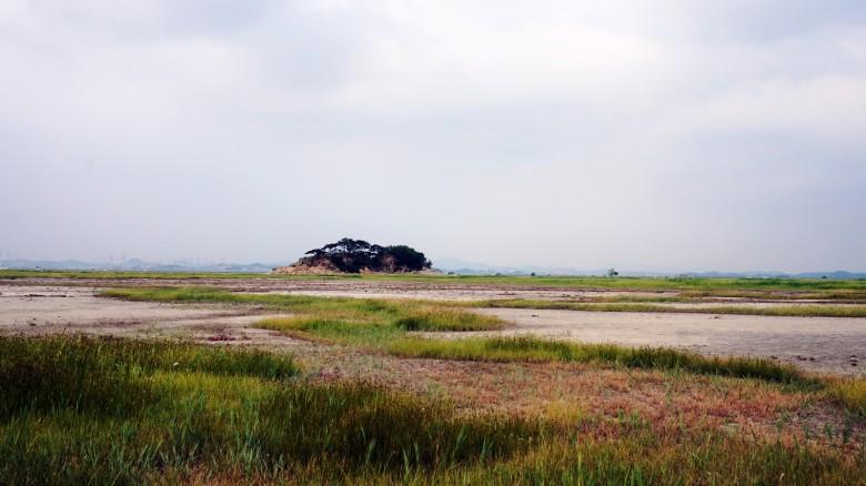 수섬, 한국의 세렝게티라 불러다오