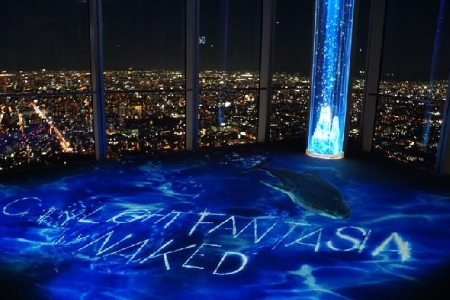 일본에서 가장 높은 야경, 하루카스 공중정원