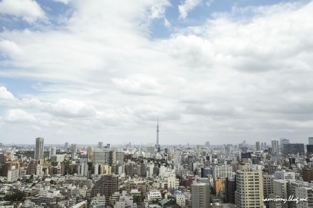 도쿄가 한눈에 분교 시빅 센터 전망대