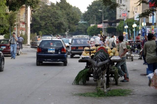 여전히 살아 있는 자들의 도시, 카이로