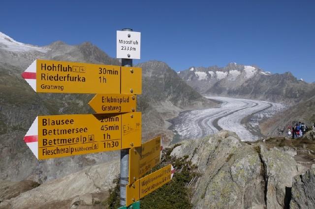 동네 뒷동산 산책하듯 즐기는 스위스 알레치 빙하