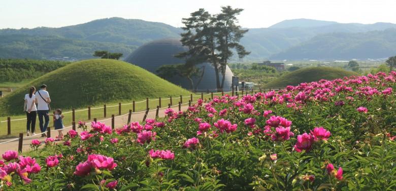 경북의 숨겨진 보석, 의성으로 떠나는 여행