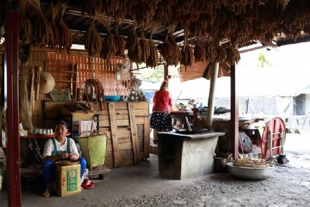 대만 타이동 여행! 원주민 부농족 그들을 만나다