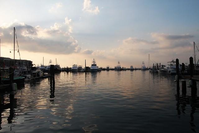 플로리다 남쪽 섬 키웨스트 산책