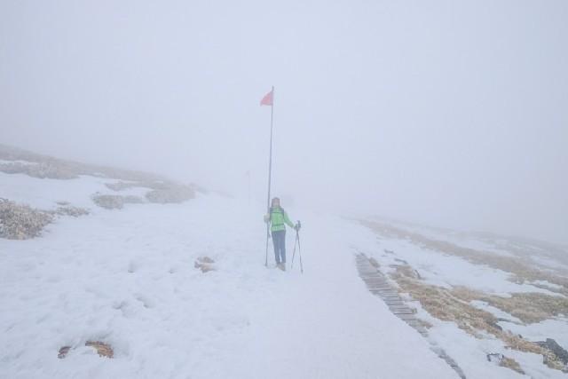 초보도 가능한 겨울 한라산 등산 코스