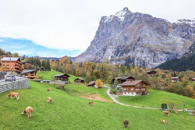 리마인드 신혼여행으로 떠난 스위스 그린델발트
