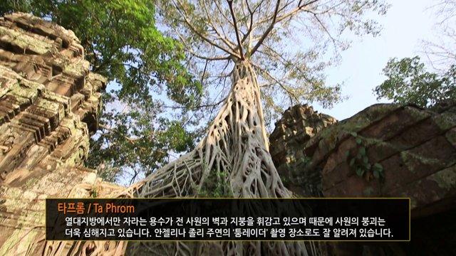 캄보디아 앙코르 유적지