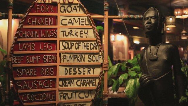 케냐 야마초마+사파리캣츠쇼