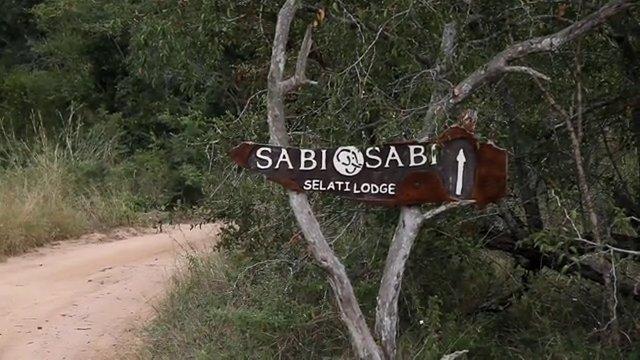 남아공 크루거 국립공원 사파리