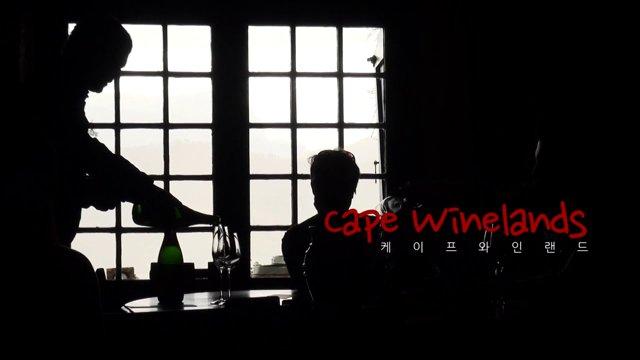 남아공 케이프 와인랜드