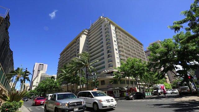하와이 도로교통 2