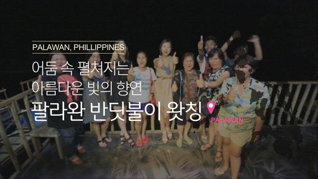 [필리핀] 어둠 속 펼쳐지는 아름다운 빛의 향연, 팔라완 반딧불이 왓칭